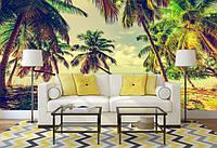 Фотообои пальмы под солнцем