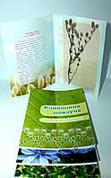 Гербарій колекція дикорослі рослини