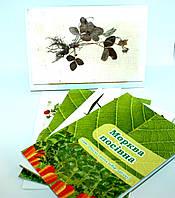 Гербарій колекція культурні рослини