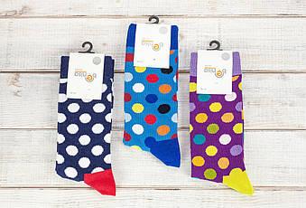 Чоловічі стрейчеві шкарпетки носки Benisa високі з малюнком кольоровий горошок розмір 41-46 12 шт уп мікс 6 ко