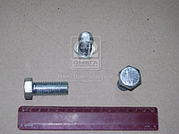 Болт М16х40, кг (пр-во г.Рославль)
