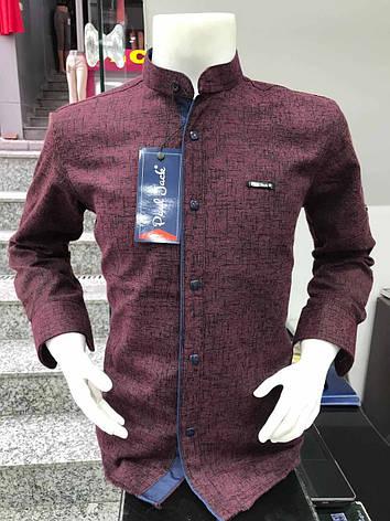Детская кашемировая рубашка Paul Jack  2-7 стойка, фото 2