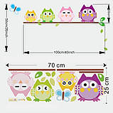 """Интерьерная наклейка в детскую """"4 совы на ветке"""" , размер 100*50 см., фото 2"""