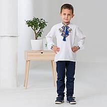Дитяча вишиванка для хлопчика Доля, фото 2
