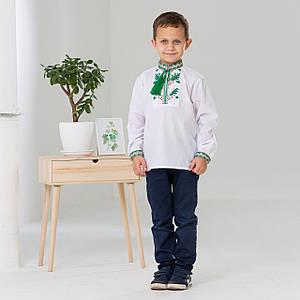 Дитяча вишиванка для хлопчика Дубовий гай