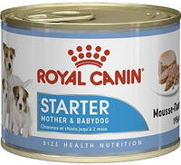 Royal Canin Starter Mousse Canine, 195 гр