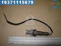 ⭐⭐⭐⭐⭐ Датчик кислорода (производство  FAE (Испания))  77001