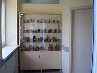 """Кактусы и композиции из кактусов на 2 этаже бизнес-центра """"РИТМ"""""""