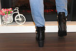 Ботиночки женские черные на небольшом каблуке Д558, фото 5