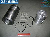 ⭐⭐⭐⭐⭐ Гильзо-комплект А-01М, А-41 (ГП+уплотнитель ) (группа Б) (МОТОРДЕТАЛЬ)  01М-01с10-03