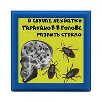 Рамка №2951 В случае нехватки тараканов разбить стекло