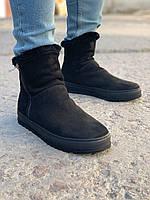 Мужские зимние ботинки черные Gross Toronto, фото 1