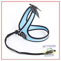 Шлея Tre Ponti Fashion Polka, голубая, F040AZ SIZE 1 (1-3 kg)