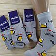 Консервовані Шкарпетки Для Кума, фото 4