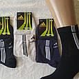 Консервированные носки Abibas - Консервированный подарок, фото 4
