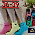 Консервированные носки Abibas - Консервированный подарок, фото 5