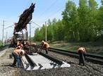 Строительство железнодорожных путей.