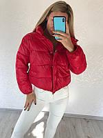 Куртка женская молодежная 4 цвета в модели