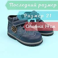 Кожаные ботинки для мальчика синие тм Bi&Ki размер 21