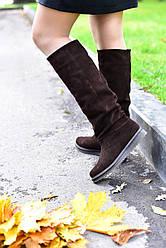 Женские демисезонные сапоги коричневые замшевые (10008)