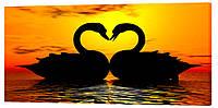 Картина на холсте Декор Карпаты Лебединая любовь 50х100 см (z148)