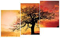 Модульная картина Декор Карпаты 100х53 см Дерево (M3-t108)
