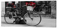 Картина на холсте Декор Карпаты Велосипед 50х100 см (g159)