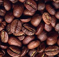 Кофе в зернах Розетта, Gardman, 100% арабика