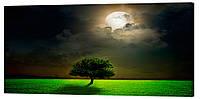Картина на холсте Декор Карпаты Одинокое дерево 50х100 см (p624)