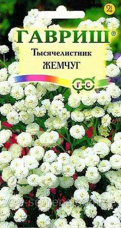 Тысячелистник Жемчуг белый 0,1 г (Гавриш)