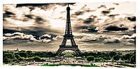 Картина на холсте Декор Карпаты Эйфелева башня 50х100 см (g110)
