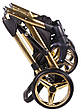 Коляска 2 в 1 Adamex Lucianо Polar (Gold) Y117, фото 9