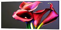 Картина на холсте Декор Карпаты Цветы 50х100 см (c198)