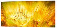 Картина на холсте Декор Карпаты Подарок 50х100 см (c250)