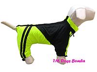 Дождевик на флисе для собак DogsBomba
