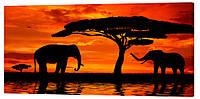 Картина на холсте Декор Карпаты Слоны 50х100 см (z429)