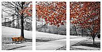 Модульная картина Декор Карпаты 100х53 см (M3-K679 61)