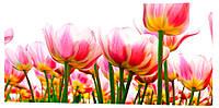 Картина на холсте Декор Карпаты Цветы 50х100 см (c751)