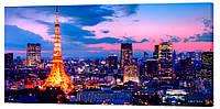 Картина на холсте Декор Карпаты Ночной Париж 50х100 см (G1184)