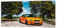 Картина на холсте Декор Карпаты BMW 50х100 см (M806)