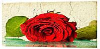 Картина на полотні Декор Карпати Квіти 50х100 см (c123)