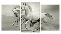 Модульная картина Декор Карпаты 100х53 см Бегущие лошади (M3-17 1)