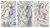 Модульная картина Декор Карпаты 100х53 см (M3-5)