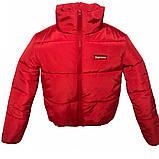 Модная короткая куртка красного цвета, размеры 42-48, фото 2