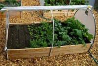 Міні-теплиця - гарант якісного багатого врожаю