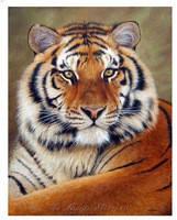 """Набор алмазной вышивки (мозаики) """"Величественный тигр"""""""