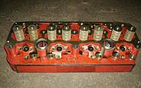 Головка блока цилиндров Д-245 МТЗ,ПАЗ 245-1003012 (пр-во ММЗ)