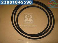⭐⭐⭐⭐⭐ Ремень SPВ 3550 (УБ-3550) (производство  Rubena)  SPB 3550