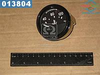 ⭐⭐⭐⭐⭐ Указатель температуры охлаждающей жидкости УК171 (производство  Владимир)  36.3807010