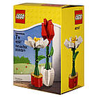 Lego Iconic Цветы 40187, фото 2